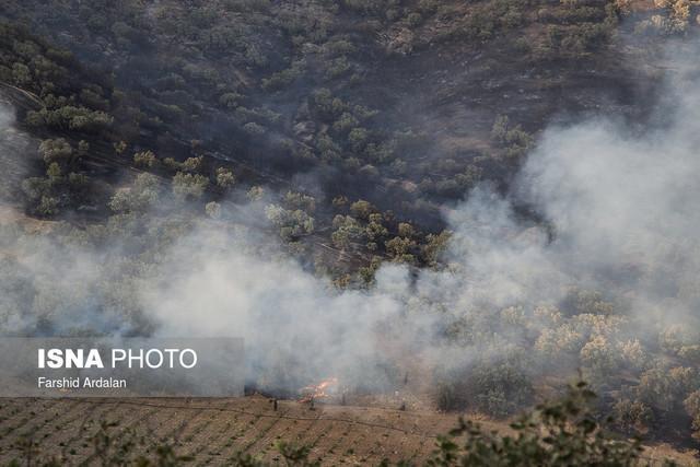 از احیای مراتع تا خودداری از برافروختن آتش در حاشیه جنگل ها