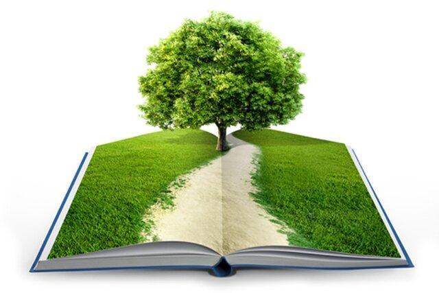 حوزه فرهنگ سازی مدیریت سبز نیازمند مشارکت تمامی دانشگاهیان است